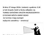 Turniej Siatkówki Drużyn Niezrzeszonych o Puchar Wójta Gminy Besko